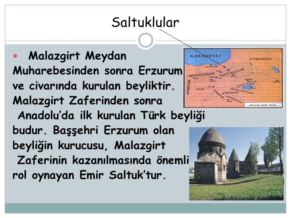 Saltuklular Malazgirt Meydan Muharebesinden sonra Erzurum ve civarında kurulan beyliktir. Malazgirt Zaferinden sonra Anadolu'da ilk kurulan Türk beyli