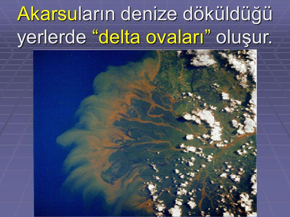 """Akarsuların denize döküldüğü yerlerde """"delta ovaları"""" oluşur."""