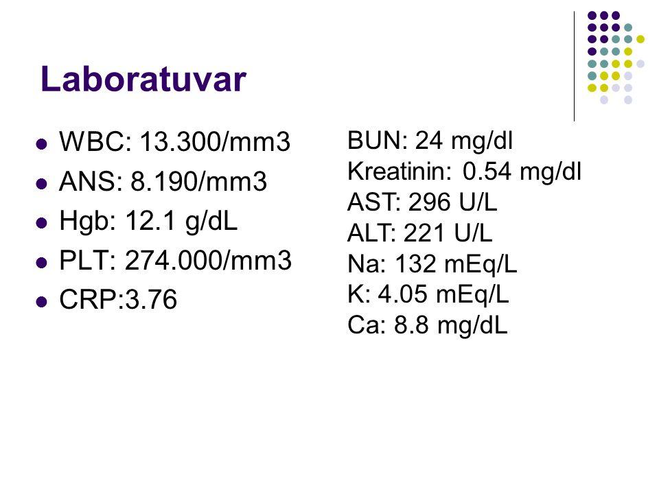 Laboratuvar WBC: 13.300/mm3 ANS: 8.190/mm3 Hgb: 12.1 g/dL PLT: 274.000/mm3 CRP:3.76 BUN: 24 mg/dl Kreatinin: 0.54 mg/dl AST: 296 U/L ALT: 221 U/L Na: