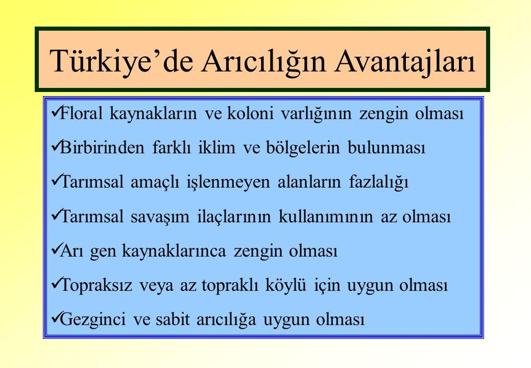 Türkiye'de Arıcılığın Avantajları Floral kaynakların ve koloni varlığının zengin olması Birbirinden farklı iklim ve bölgelerin bulunması Tarımsal amaç