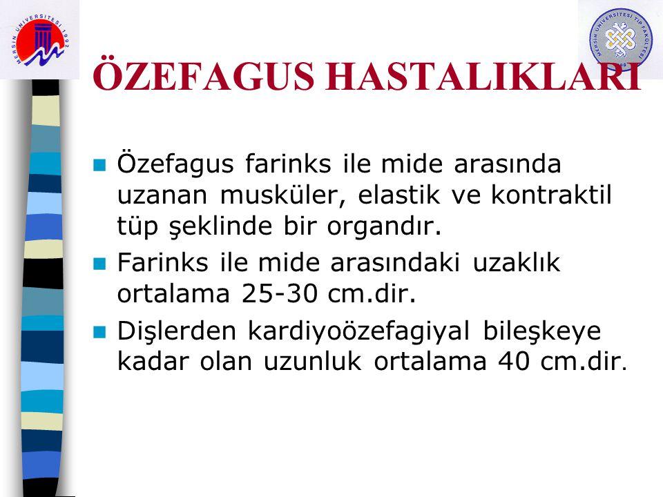 ÖZEFAGUS HASTALIKLARI Özefagus farinks ile mide arasında uzanan musküler, elastik ve kontraktil tüp şeklinde bir organdır. Farinks ile mide arasındaki