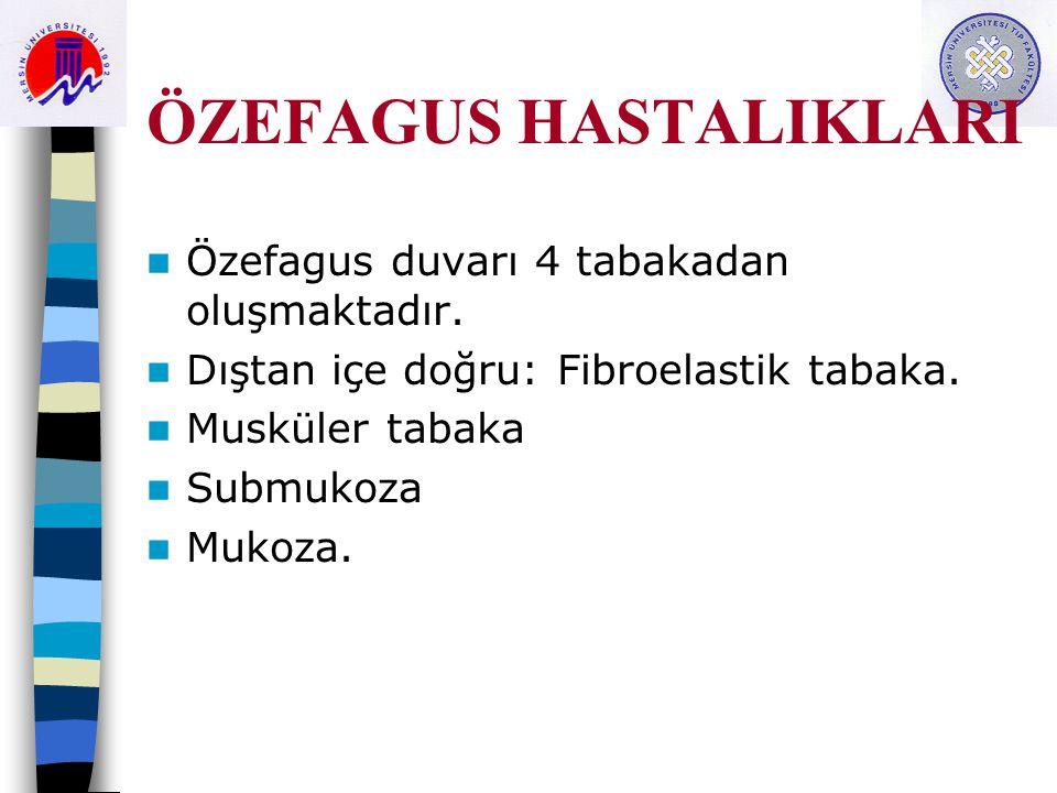 ÖZEFAGUS HASTALIKLARI Özefagus duvarı 4 tabakadan oluşmaktadır. Dıştan içe doğru: Fibroelastik tabaka. Musküler tabaka Submukoza Mukoza.