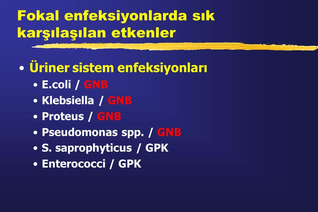 Fokal enfeksiyonlarda sık karşılaşılan etkenler Üriner sistem enfeksiyonları E.coli / GNB Klebsiella / GNB Proteus / GNB Pseudomonas spp. / GNB S. sap