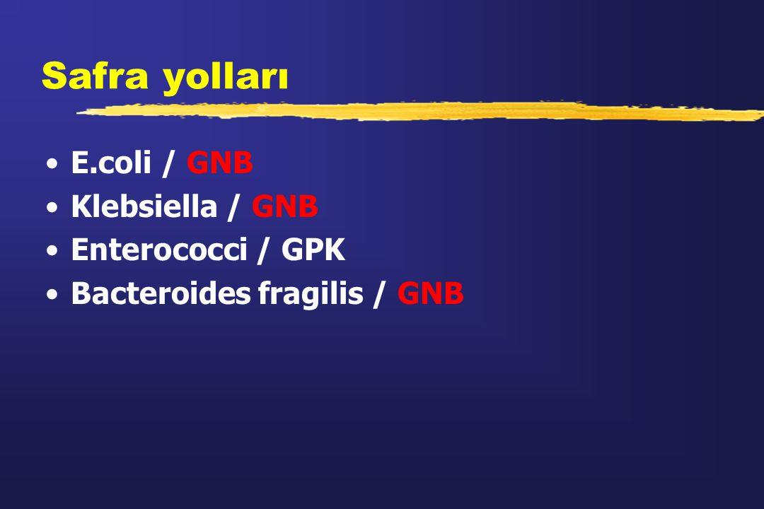 Safra yolları E.coli / GNB Klebsiella / GNB Enterococci / GPK Bacteroides fragilis / GNB