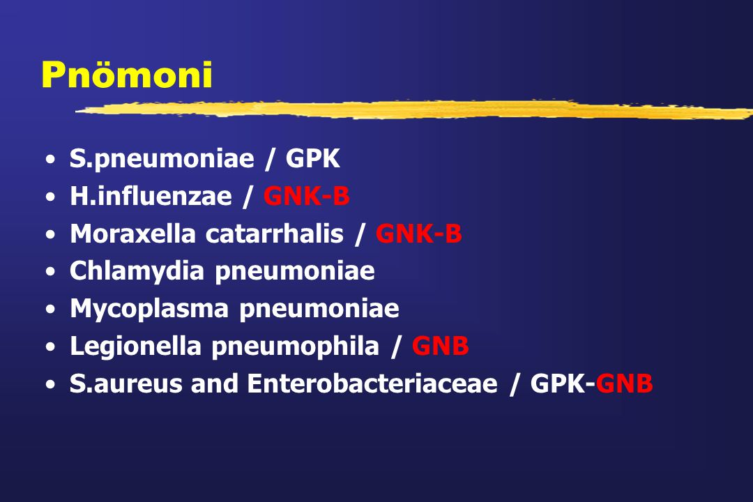 Pnömoni S.pneumoniae / GPK H.influenzae / GNK-B Moraxella catarrhalis / GNK-B Chlamydia pneumoniae Mycoplasma pneumoniae Legionella pneumophila / GNB