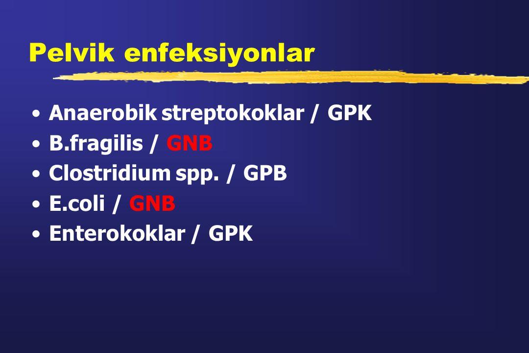 Pelvik enfeksiyonlar Anaerobik streptokoklar / GPK B.fragilis / GNB Clostridium spp. / GPB E.coli / GNB Enterokoklar / GPK