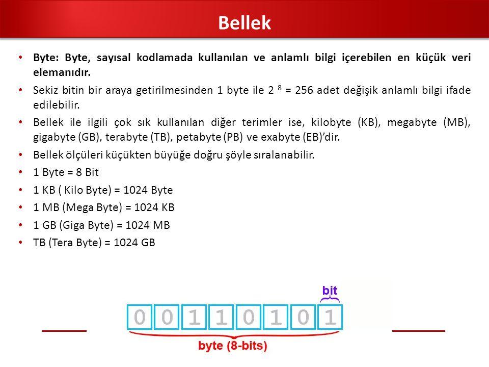 Byte: Byte, sayısal kodlamada kullanılan ve anlamlı bilgi içerebilen en küçük veri elemanıdır. Sekiz bitin bir araya getirilmesinden 1 byte ile 2 8 =