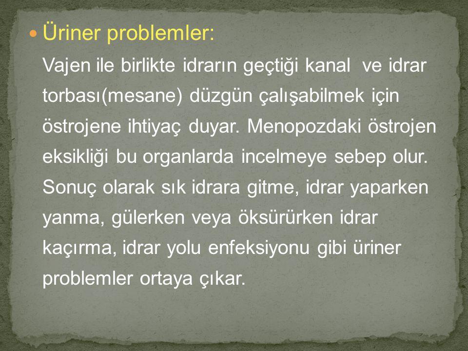 Üriner problemler: Vajen ile birlikte idrarın geçtiği kanal ve idrar torbası(mesane) düzgün çalışabilmek için östrojene ihtiyaç duyar. Menopozdaki öst
