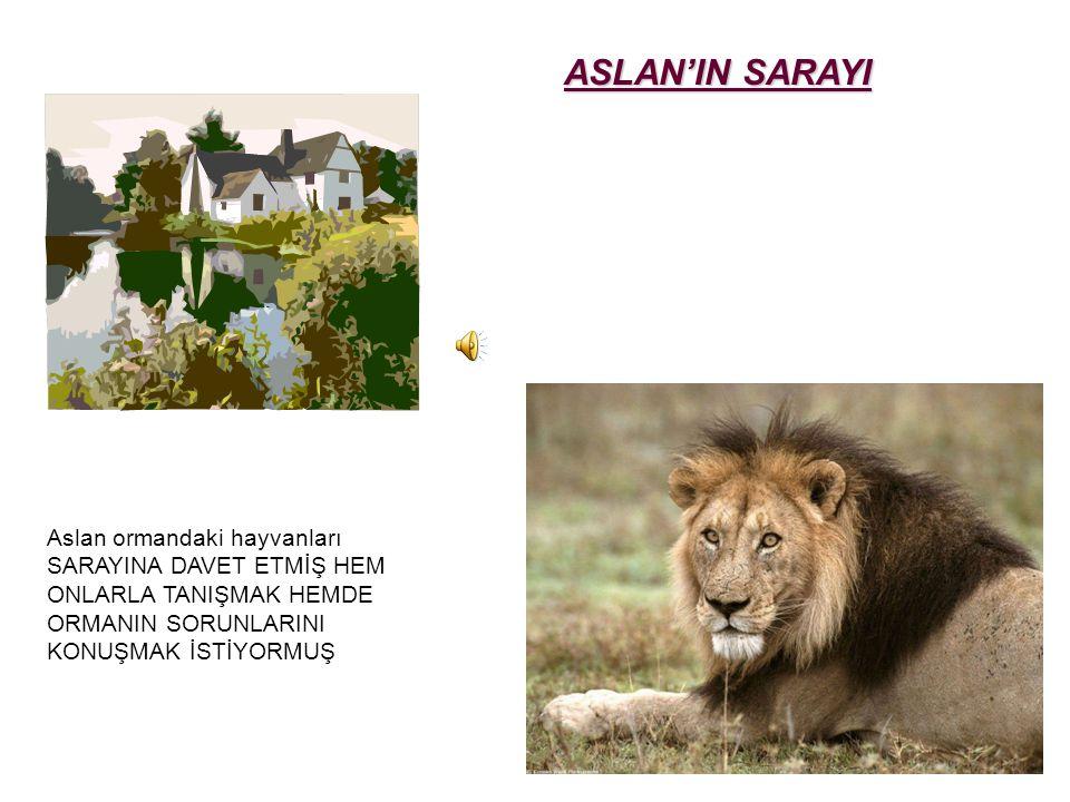 Aslan ormandaki hayvanları SARAYINA DAVET ETMİŞ HEM ONLARLA TANIŞMAK HEMDE ORMANIN SORUNLARINI KONUŞMAK İSTİYORMUŞ ASLAN'IN SARAYI