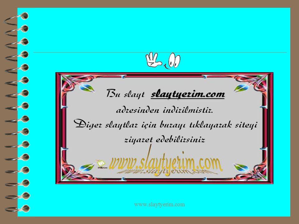 www.slaytyerim.com