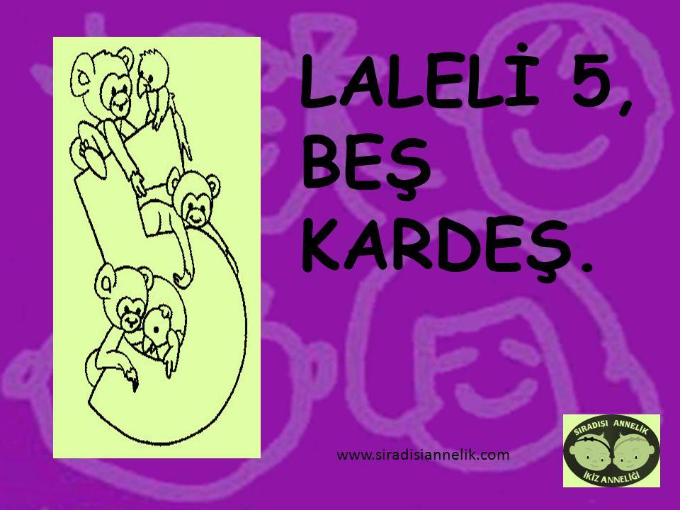 LALELİ 6, ALTINIMI ÇALDI. www.siradisiannelik.com
