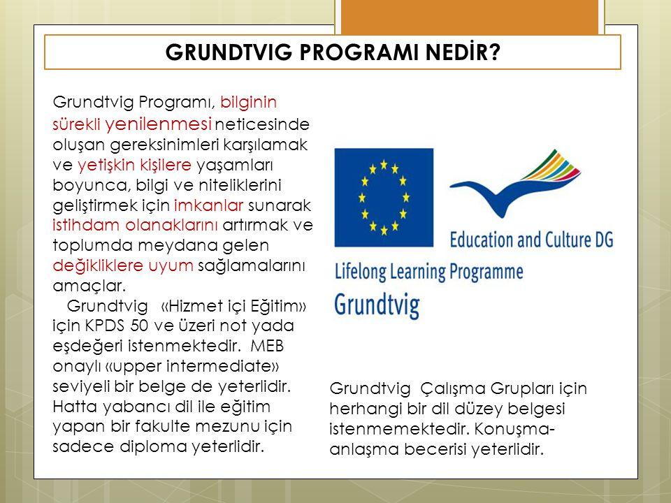 GRUNDTVIG PROGRAMI NEDİR? Grundtvig Programı, bilginin sürekli yenilenmesi neticesinde oluşan gereksinimleri karşılamak ve yetişkin kişilere yaşamları