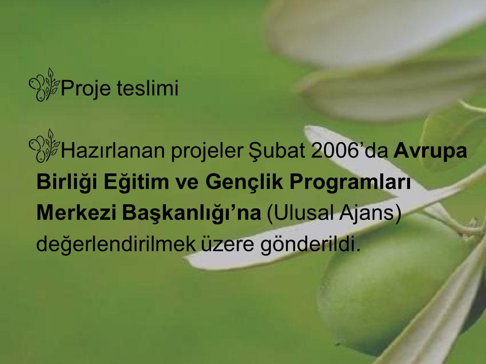 Proje teslimi Hazırlanan projeler Şubat 2006'da Avrupa Birliği Eğitim ve Gençlik Programları Merkezi Başkanlığı'na (Ulusal Ajans) değerlendirilmek üze