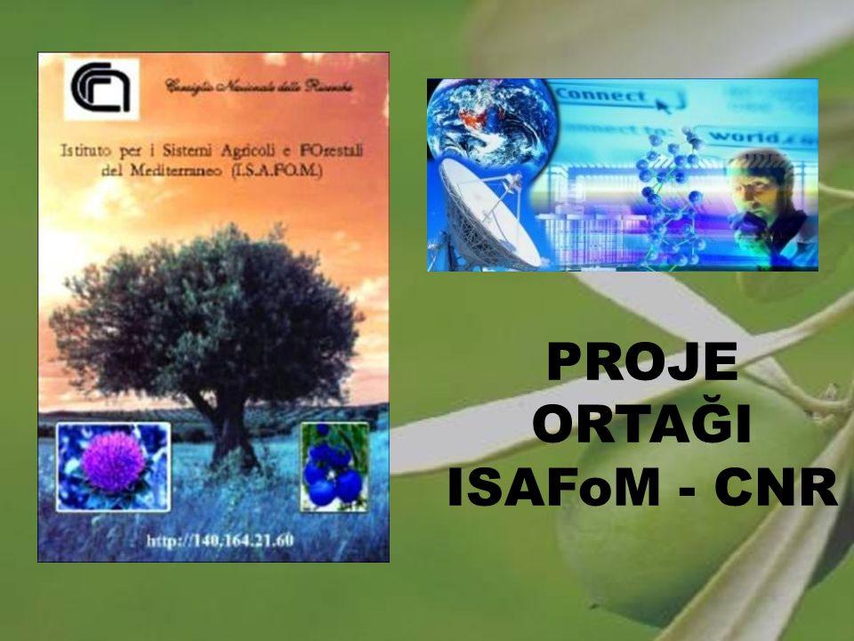 PROJE ORTAĞI ISAFoM - CNR