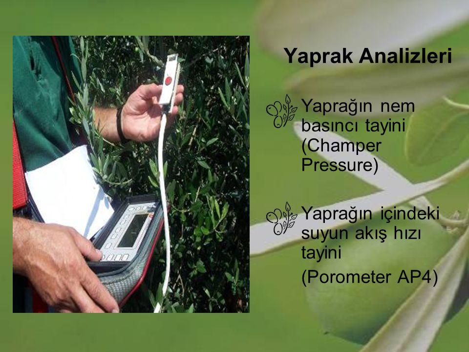 Yaprak Analizleri Yaprağın nem basıncı tayini (Champer Pressure) Yaprağın içindeki suyun akış hızı tayini (Porometer AP4)