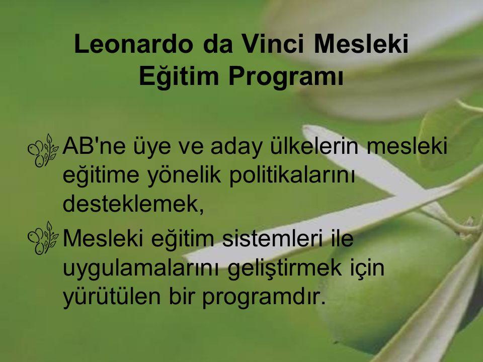 Sayılarla Leonardo da Vinci 2005 Teklif Yılında Kabul Edilen Projeler İlk eleme: 2571 projeden 2464 tanesi uygunluk kriterlerini karşılamıştır Son değerlendirme: yeter puan alan 602 projeden 347'si asil, 255'i yedek olarak desteklenmeye değer bulunmuştur