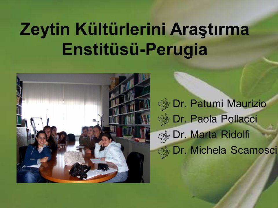 Zeytin Kültürlerini Araştırma Enstitüsü-Perugia Dr. Patumi Maurizio Dr. Paola Pollacci Dr. Marta Ridolfi Dr. Michela Scamosci
