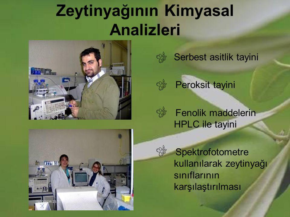 Zeytinyağının Kimyasal Analizleri Serbest asitlik tayini Peroksit tayini Fenolik maddelerin HPLC ile tayini Spektrofotometre kullanılarak zeytinyağı s