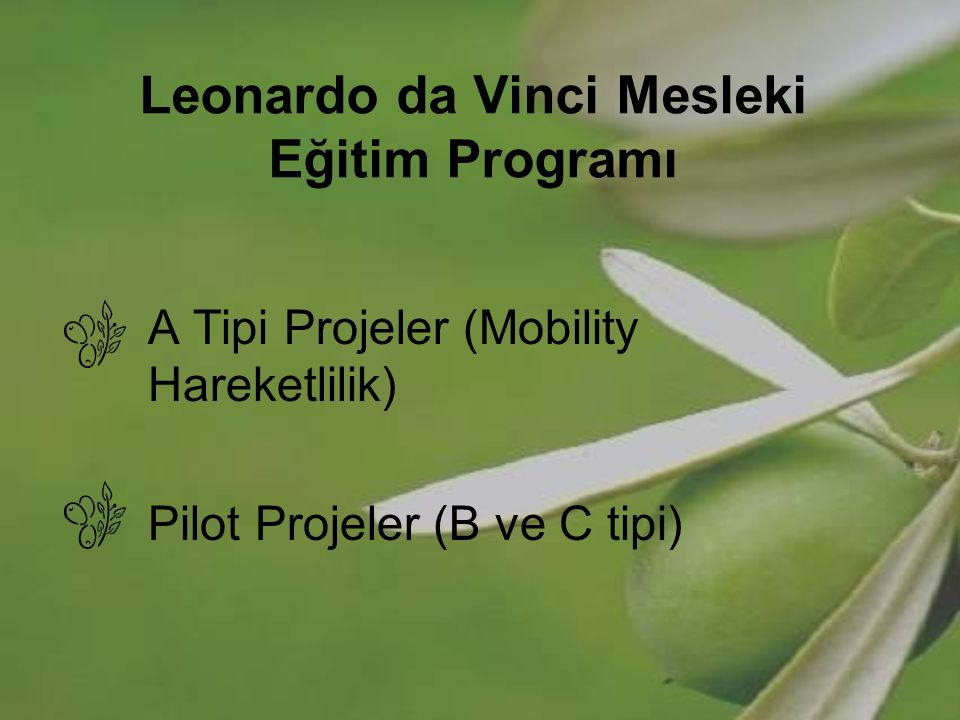 Leonardo da Vinci Mesleki Eğitim Programı A Tipi Projeler (Mobility Hareketlilik) Pilot Projeler (B ve C tipi)