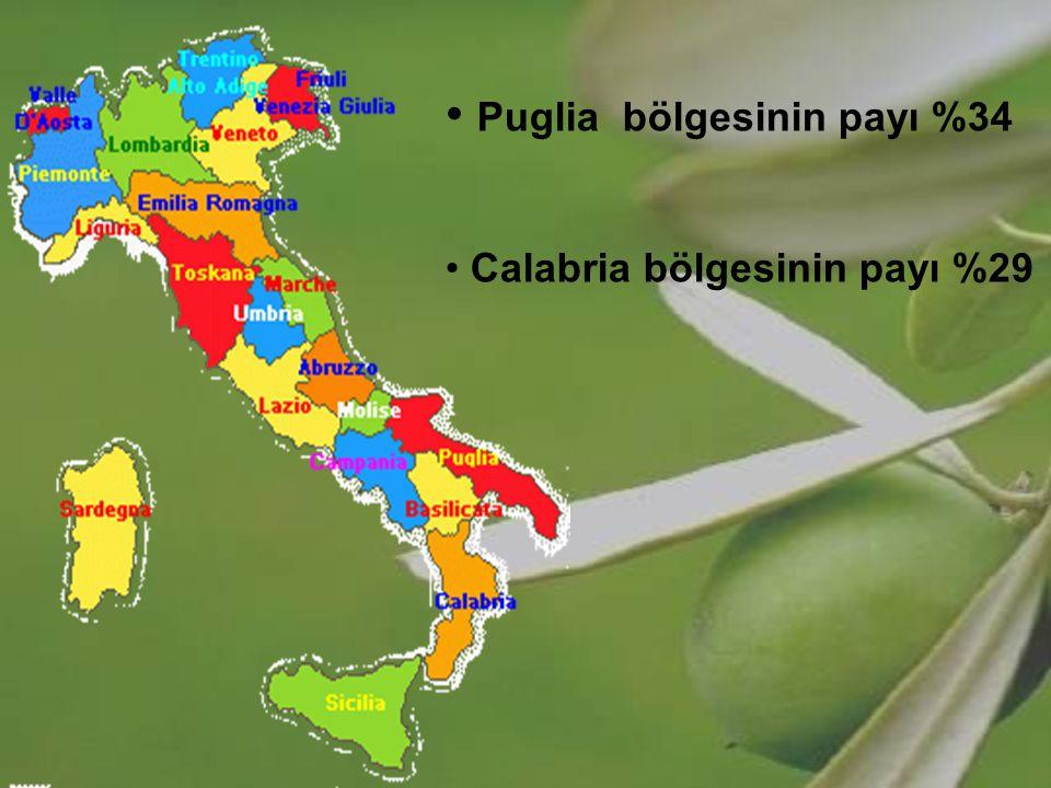 Puglia bölgesinin payı %34 Calabria bölgesinin payı %29