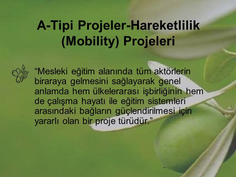 Hareketlilik (Mobility) Projeleri Amaç; Mesleki eğitim almakta olan ve/veya mesleki eğitimden sorumlu olan kişilerin organize faaliyetlerle AB üyesi ülkelere gönderilmesi