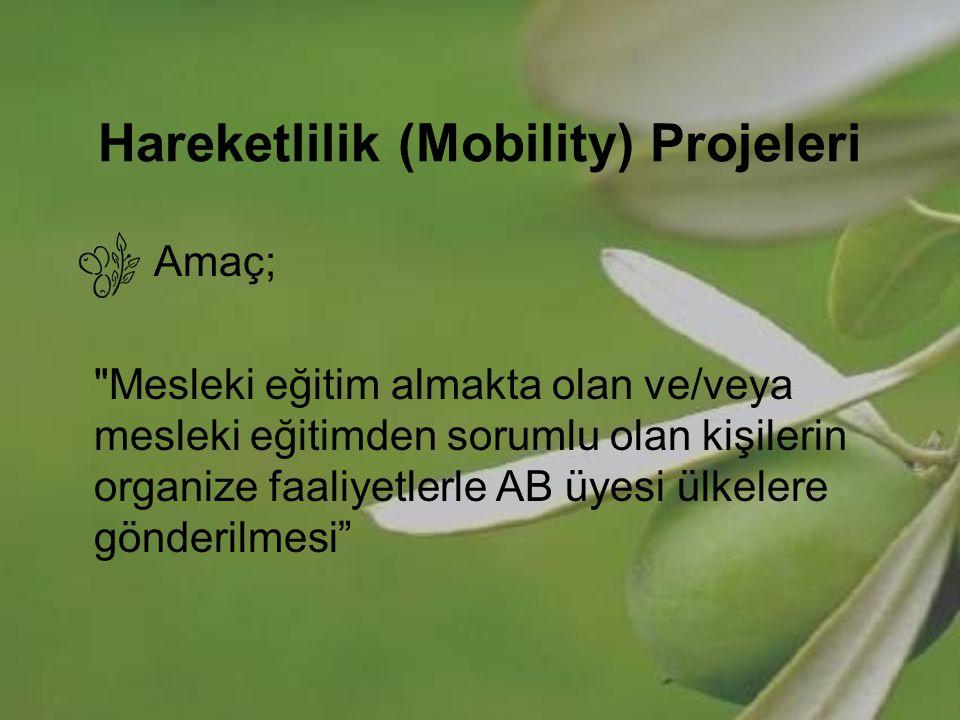 Hareketlilik (Mobility) Projeleri Hareketlilik (Mobility)Projelerindeki Esas Nokta; Temel mesleki eğitim ve sürekli-mesleki eğitimin Avrupalılık boyutunun güçlendirilmesinin, Kişilerin iş bağlantılı eğitimle deneyim kazanmaya teşvik edilmesinin, Dil becerilerinin, Ülkelerarası bağlantıların, Eğiticiler ve insan kaynakları yöneticileri için başarılı uygulamaların geliştirilmesidir.