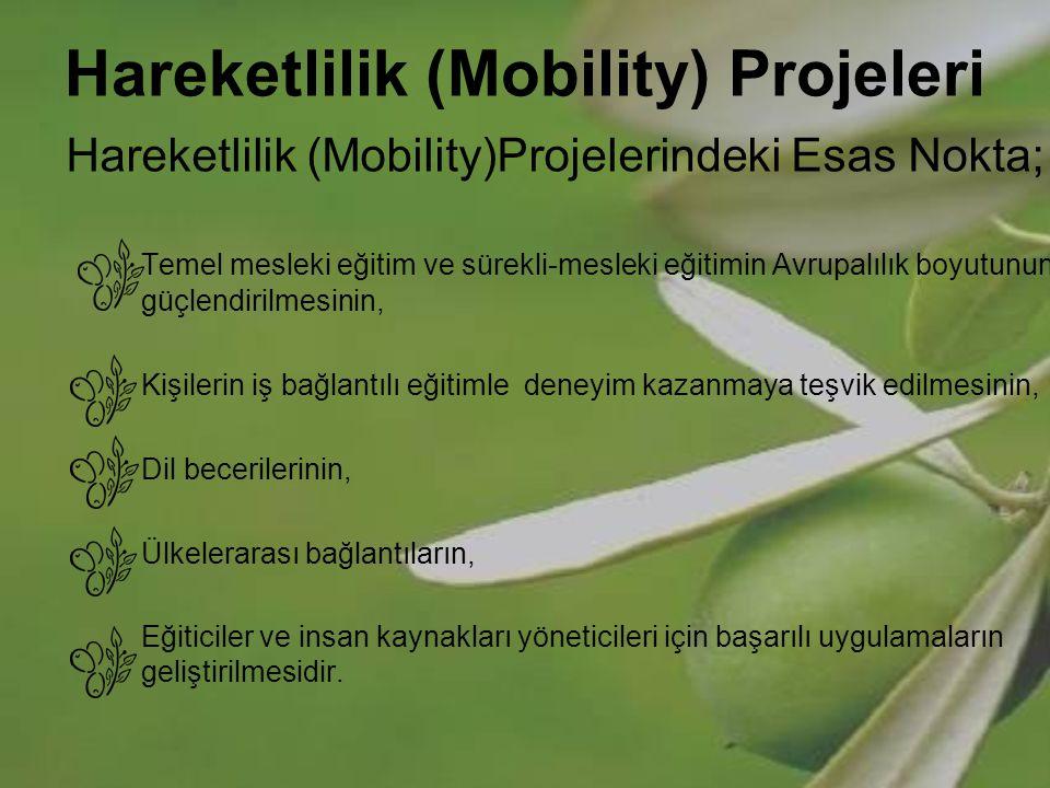 Hareketlilik (Mobility) Projeleri 3 farklı türü vardır: Ülkelerarası yerleştirme projeleri, Ülkelerarası değişim projeleri, CEDEFOP tarafından düzenlenen çalışma ziyaretleri