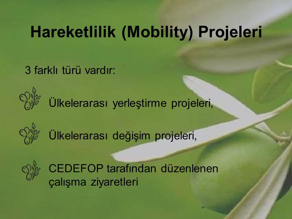 Hareketlilik (Mobility) Projeleri 3 farklı türü vardır: Ülkelerarası yerleştirme projeleri, Ülkelerarası değişim projeleri, CEDEFOP tarafından düzenle