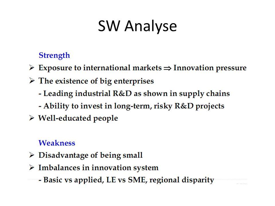 SW Analyse