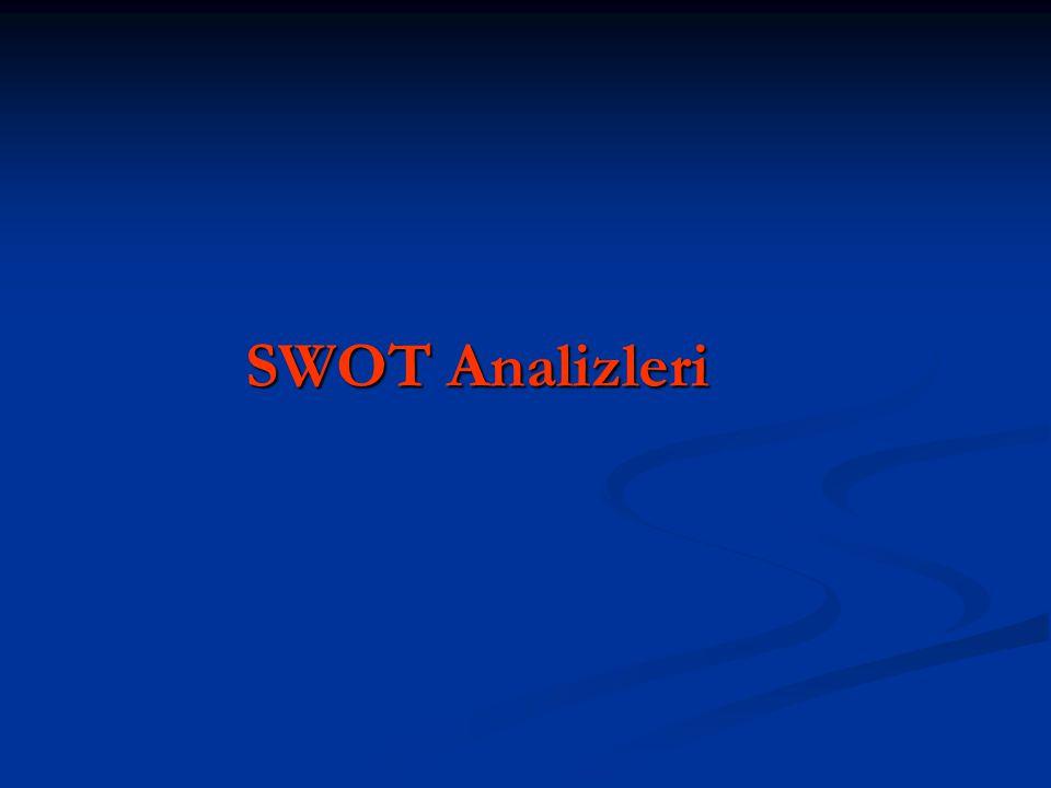 SWOT Analizleri