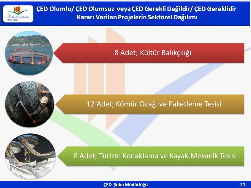 ÇED Şube Müdürlüğü 21 ÇED Olumlu/ ÇED Olumsuz veya ÇED Gerekli Değildir/ ÇED Gereklidir Kararı Verilen Projelerin Sektörel Dağılımı 8 Adet; Kültür Bal