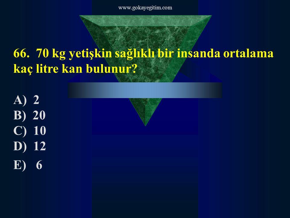 www.gokayegitim.com 66.70 kg yetişkin sağlıklı bir insanda ortalama kaç litre kan bulunur.