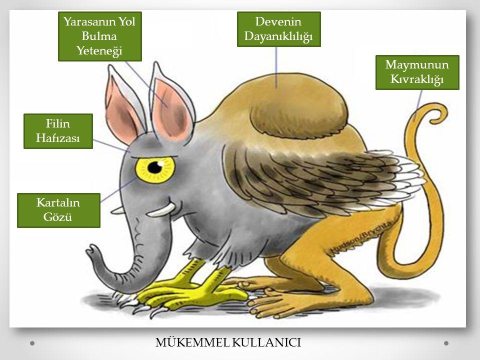 Maymunun Kıvraklığı Devenin Dayanıklılığı Yarasanın Yol Bulma Yeteneği Filin Hafızası Kartalın Gözü MÜKEMMEL KULLANICI