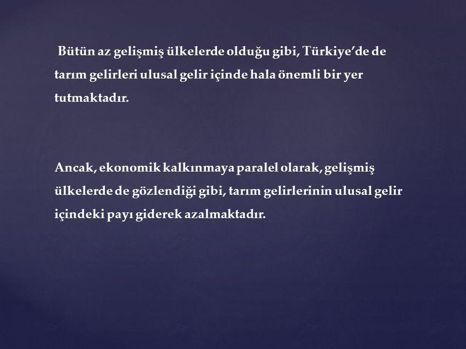 Bütün az gelişmiş ülkelerde olduğu gibi, Türkiye'de de tarım gelirleri ulusal gelir içinde hala önemli bir yer tutmaktadır. Ancak, ekonomik kalkınmaya