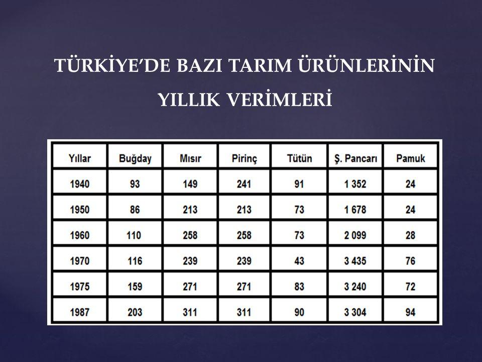 TÜRKİYE'DE BAZI TARIM ÜRÜNLERİNİN YILLIK VERİMLERİ