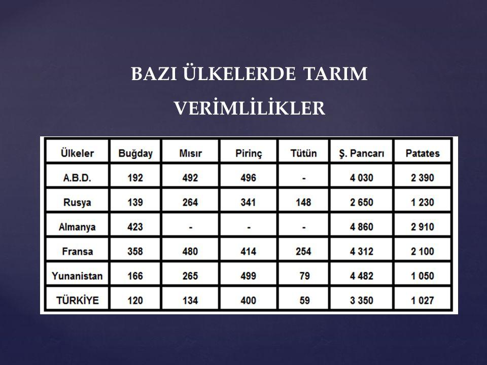 BAZI ÜLKELERDE TARIM VERİMLİLİKLER