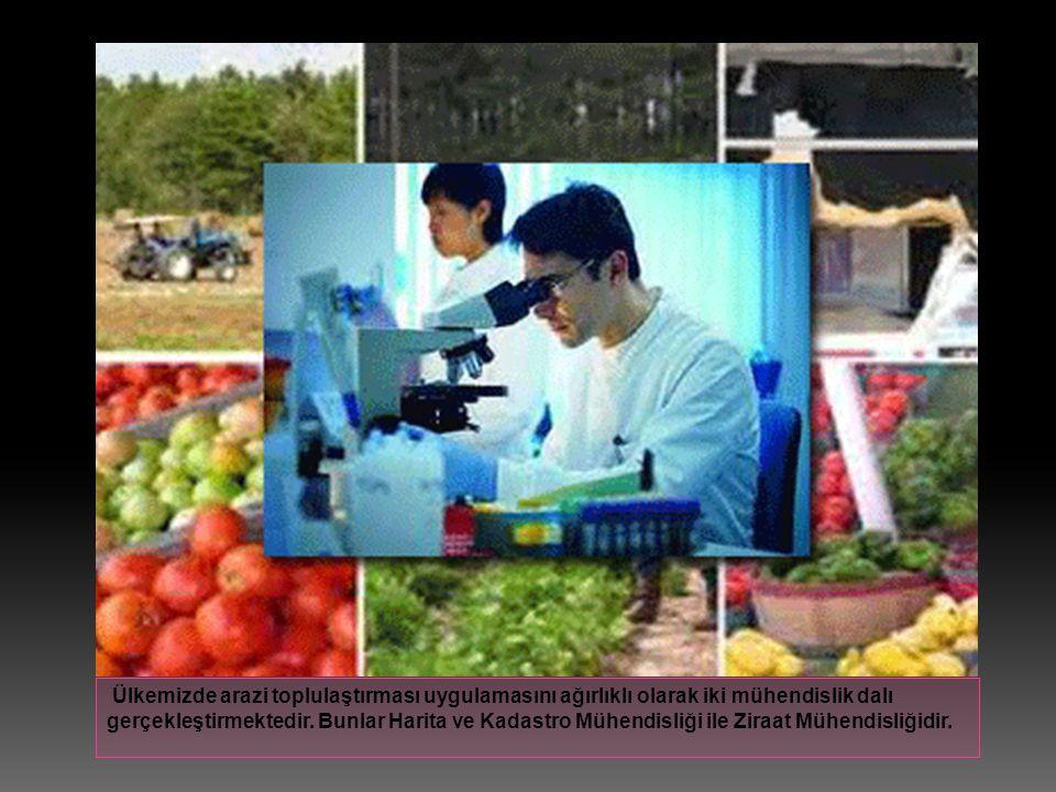 Ülkemizde arazi toplulaştırması uygulamasını ağırlıklı olarak iki mühendislik dalı gerçekleştirmektedir. Bunlar Harita ve Kadastro Mühendisliği ile Zi