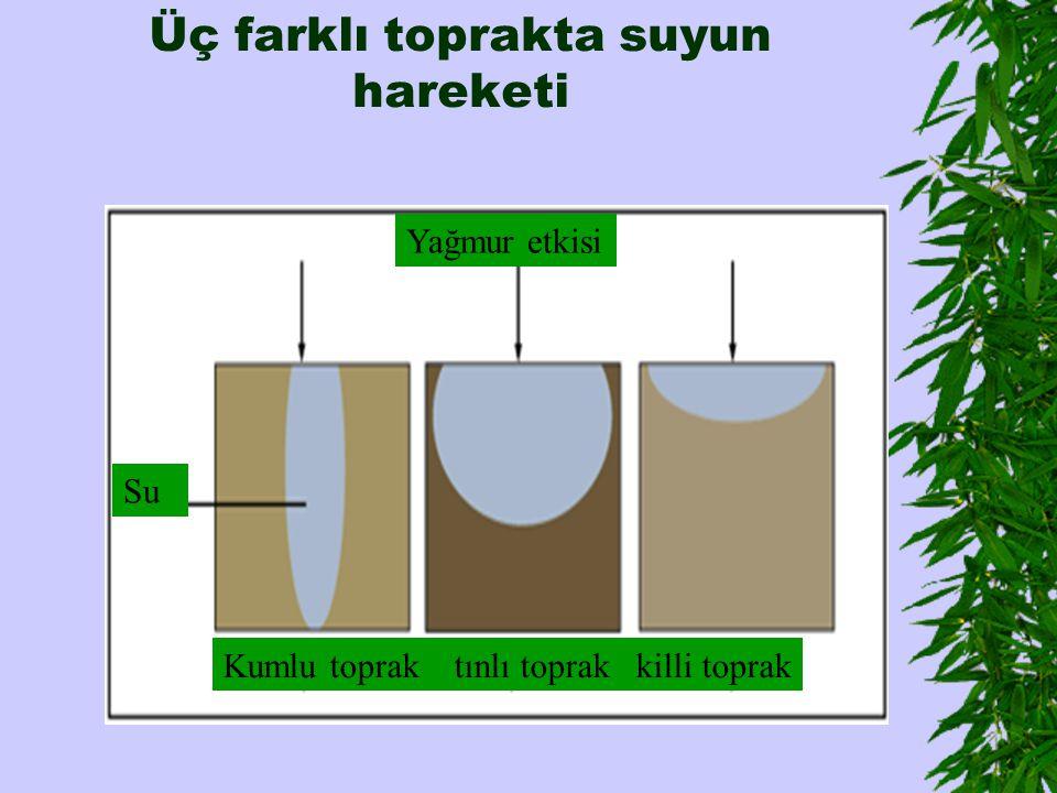 Üç farklı toprakta suyun hareketi Kumlu toprak tınlı toprak killi toprak Su Yağmur etkisi