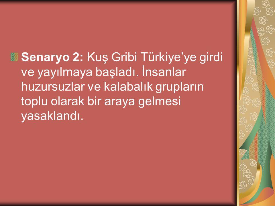 Senaryo 2: Kuş Gribi Türkiye'ye girdi ve yayılmaya başladı. İnsanlar huzursuzlar ve kalabalık grupların toplu olarak bir araya gelmesi yasaklandı.