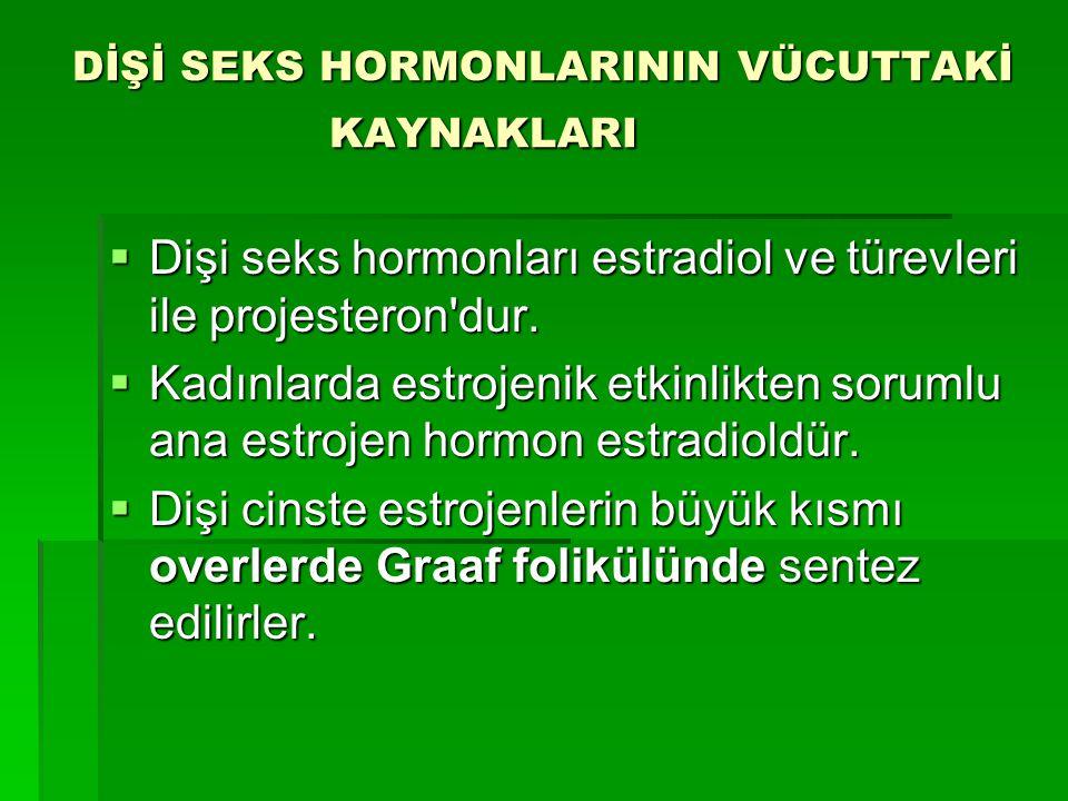 DİŞİ SEKS HORMONLARININ VÜCUTTAKİ KAYNAKLARI  Dişi seks hormonları estradiol ve türevleri ile projesteron'dur.  Kadınlarda estrojenik etkinlikten so
