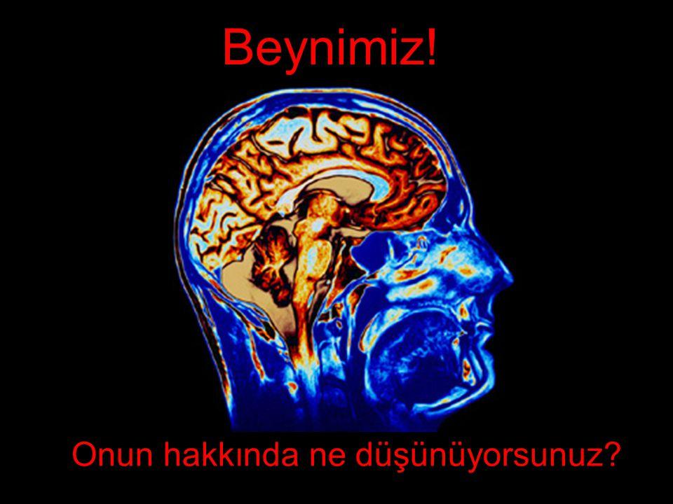 Beynimiz! Onun hakkında ne düşünüyorsunuz