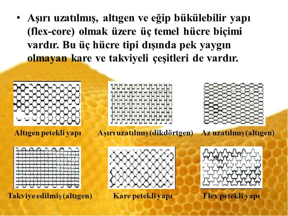 Aşırı uzatılmış, altıgen ve eğip bükülebilir yapı (flex-core) olmak üzere üç temel hücre biçimi vardır.