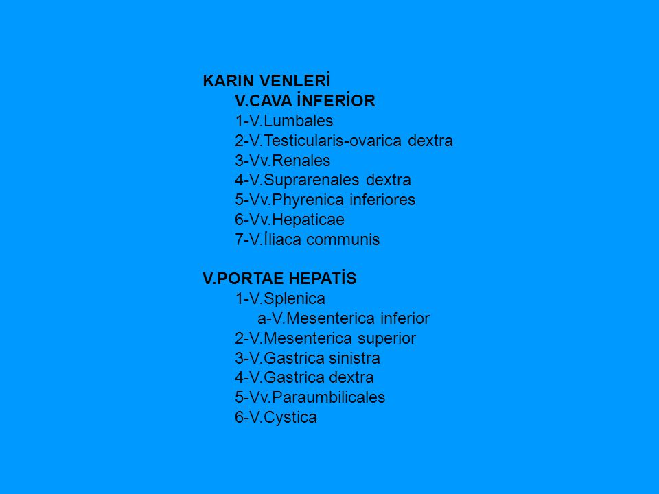 KARIN VENLERİ V.CAVA İNFERİOR 1-V.Lumbales 2-V.Testicularis-ovarica dextra 3-Vv.Renales 4-V.Suprarenales dextra 5-Vv.Phyrenica inferiores 6-Vv.Hepatic
