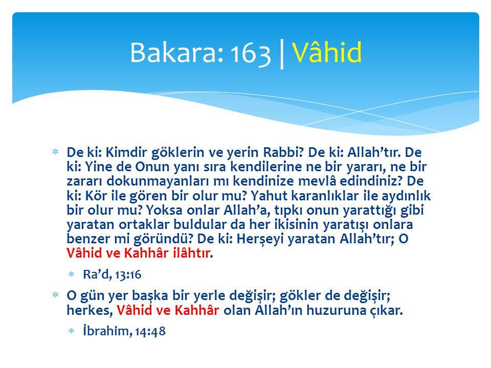  De ki: Kimdir göklerin ve yerin Rabbi.De ki: Allah'tır.