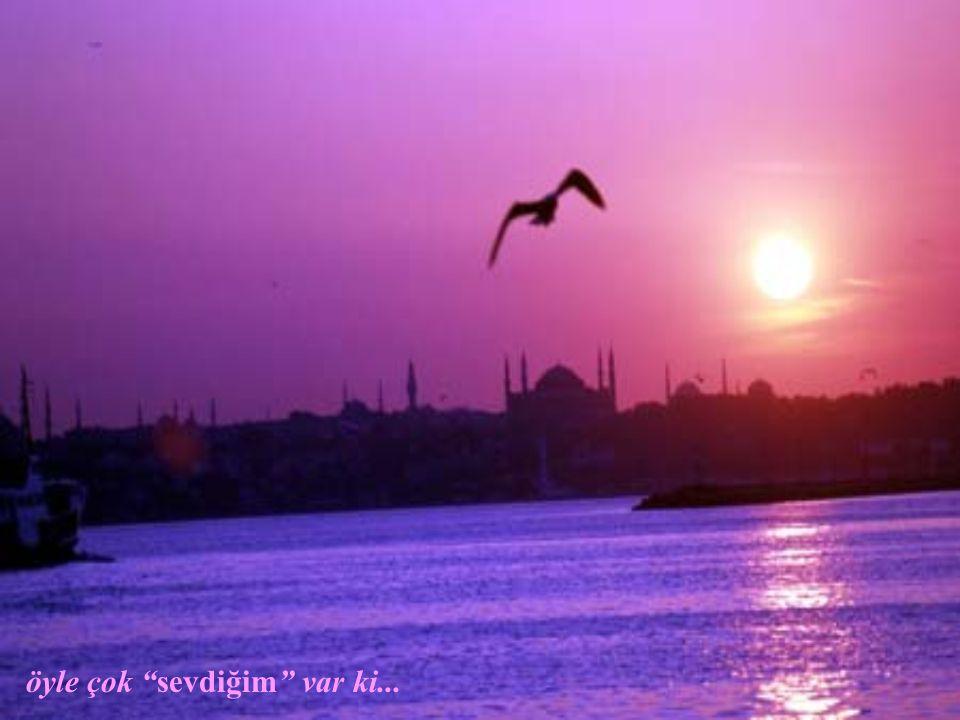 Sarayburnu / İSTANBUL