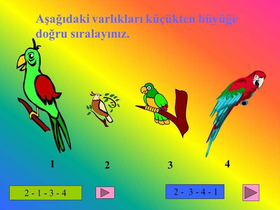 Aşağıdaki varlıkları küçükten büyüğe doğru sıralayınız. 1 23 4 2 - 1 - 3 - 4 2 - 3 - 4 - 1
