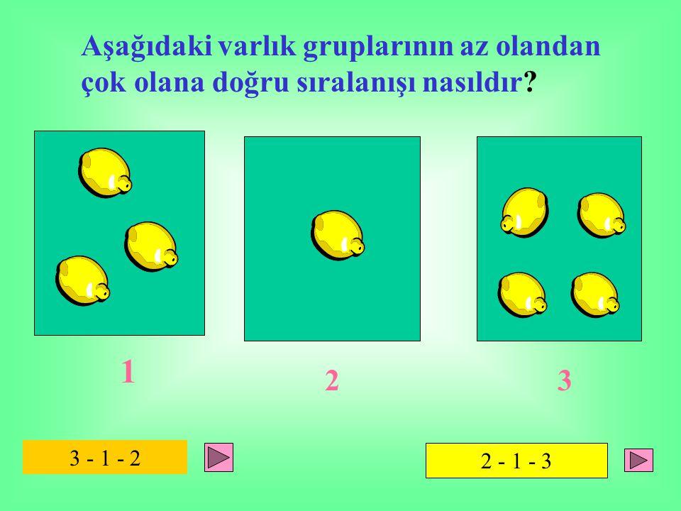 Aşağıdaki varlık gruplarının az olandan çok olana doğru sıralanışı nasıldır? 1 2 3 3 - 1 - 2 2 - 1 - 3