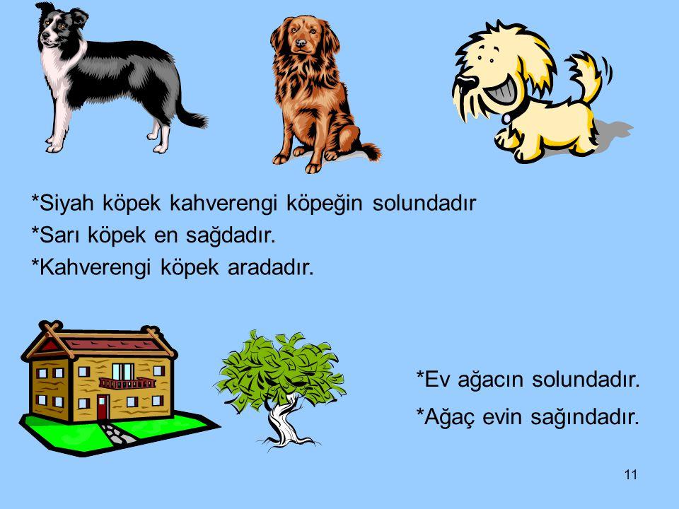 11 *Siyah köpek kahverengi köpeğin solundadır *Sarı köpek en sağdadır. *Kahverengi köpek aradadır. *Ev ağacın solundadır. *Ağaç evin sağındadır.