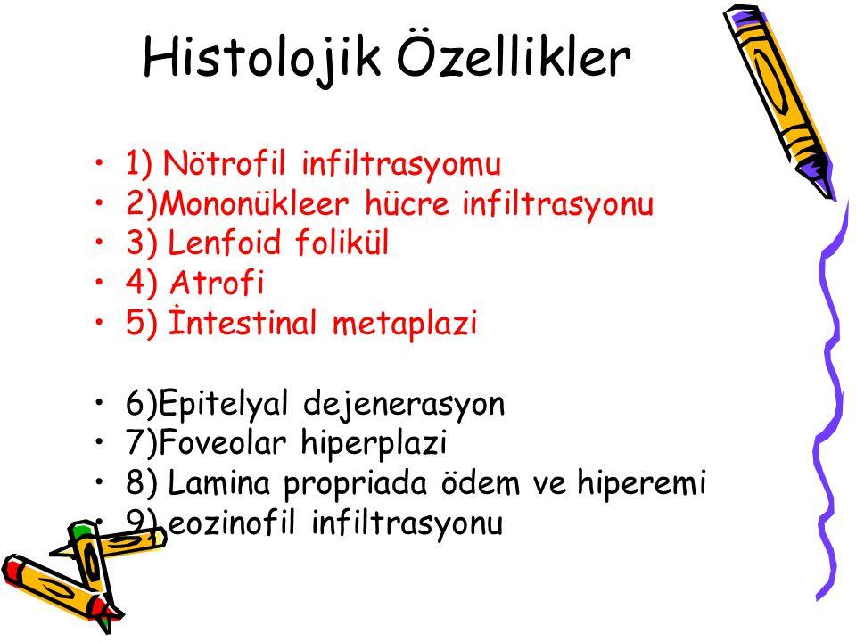Histolojik Özellikler 1) Nötrofil infiltrasyomu 2)Mononükleer hücre infiltrasyonu 3) Lenfoid folikül 4) Atrofi 5) İntestinal metaplazi 6)Epitelyal dej