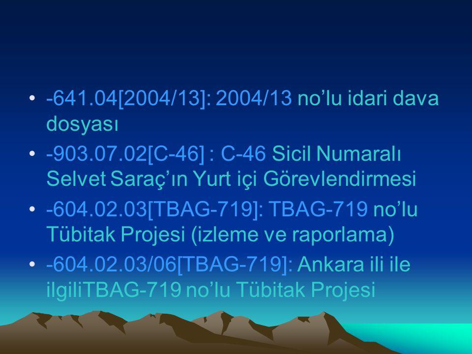 -641.04[2004/13]: 2004/13 no'lu idari dava dosyası -903.07.02[C-46] : C-46 Sicil Numaralı Selvet Saraç'ın Yurt içi Görevlendirmesi -604.02.03[TBAG-719